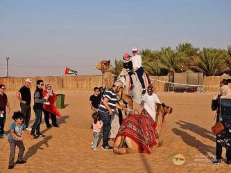 camelriding2