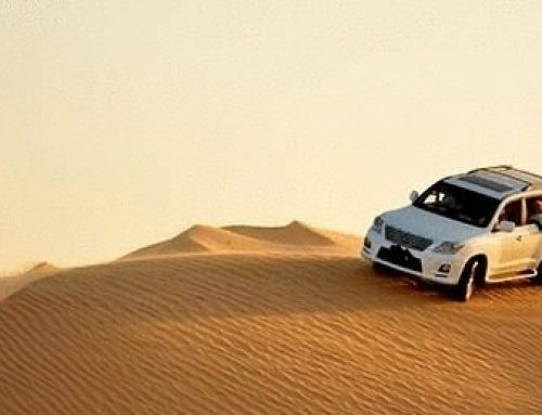 5 Basic Things You Need to Know Before a Desert Safari Adventure